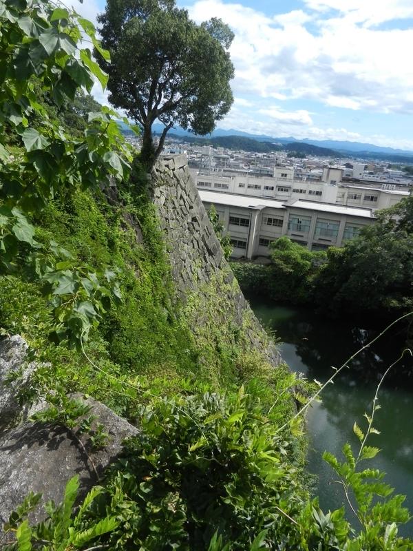 f:id:tatsuyakawakami:20190908232027j:plain