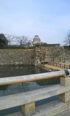 f:id:tatsuyakawakami:20191107175139j:plain
