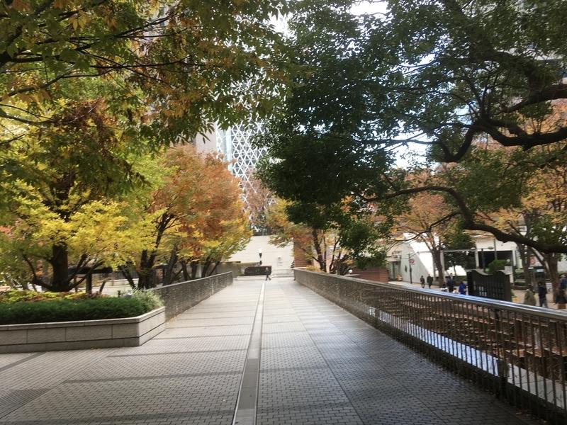 f:id:tatsuyakawakami:20191205184030j:plain