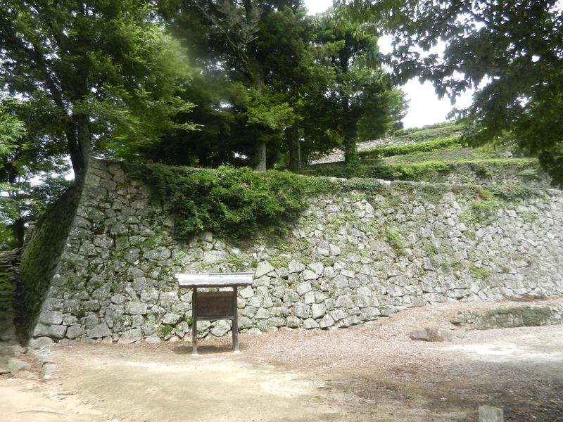 f:id:tatsuyakawakami:20200728183243j:plain