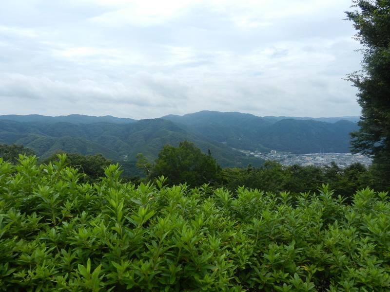 f:id:tatsuyakawakami:20200728183355j:plain