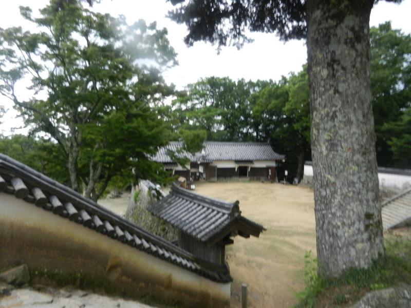 f:id:tatsuyakawakami:20200728183728j:plain