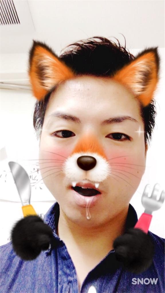 f:id:tatsuyatatsuyan:20161121111512j:image