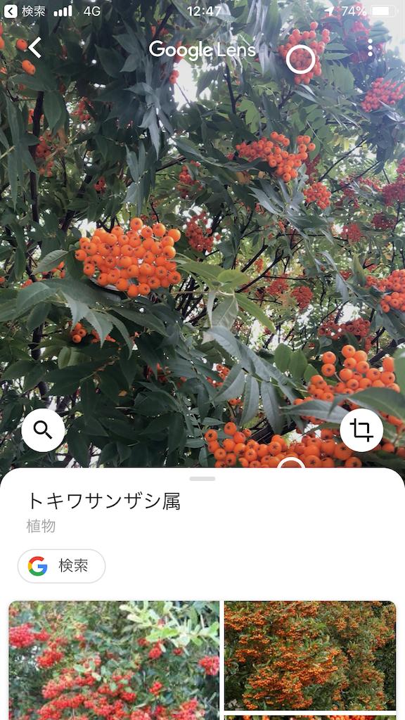 f:id:taukuda4470:20190920094619p:image