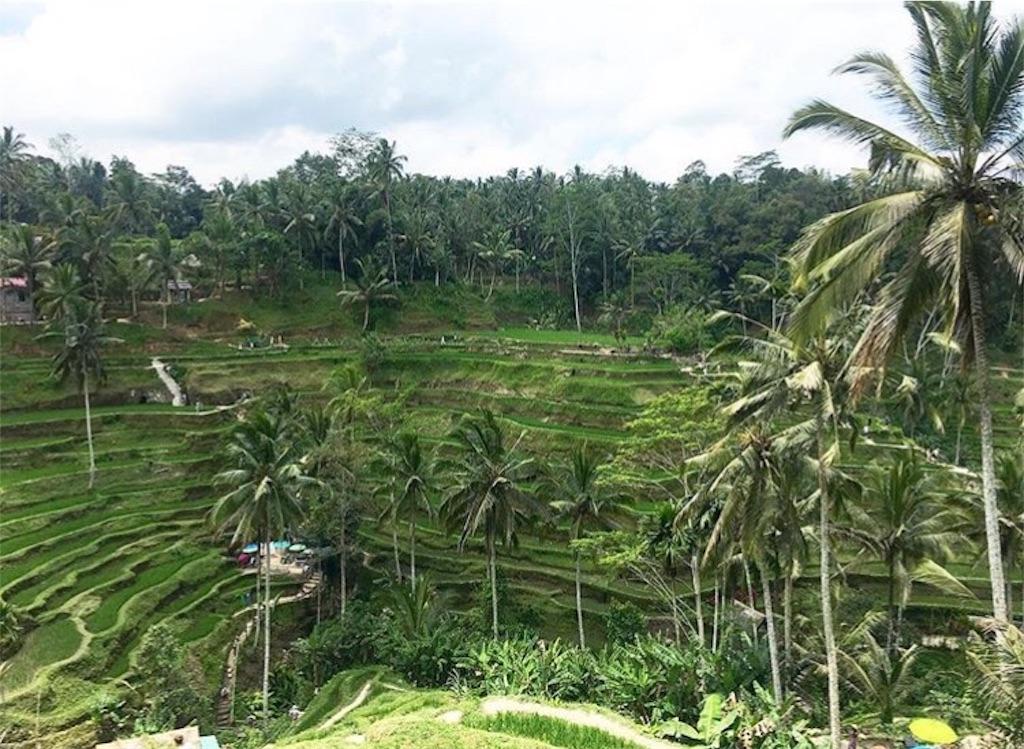 f:id:taylorchan:20180201164606j:image