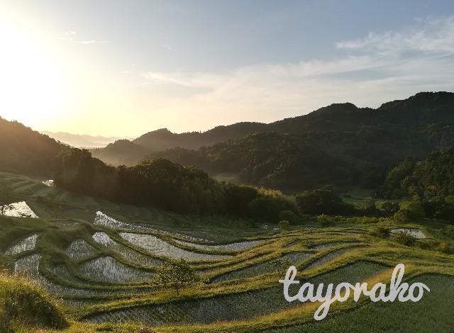 f:id:tayorako:20190614080216j:image