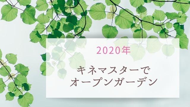 f:id:tayorako:20200424103047j:plain