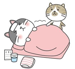 熱 風邪 寝る