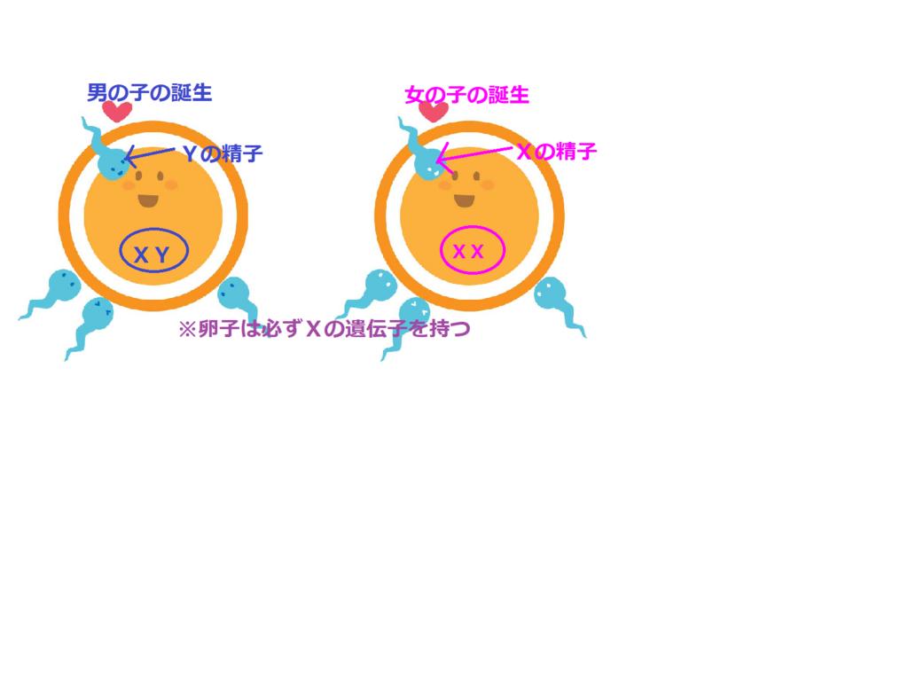 f:id:tbbokumetu:20171227131425p:plain