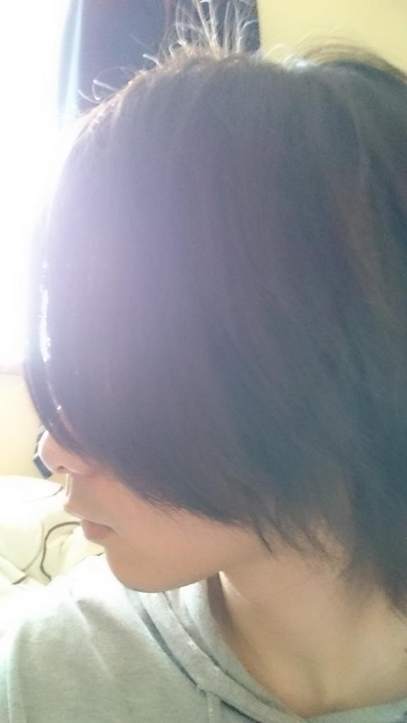f:id:tbs-kun:20170604165907j:plain