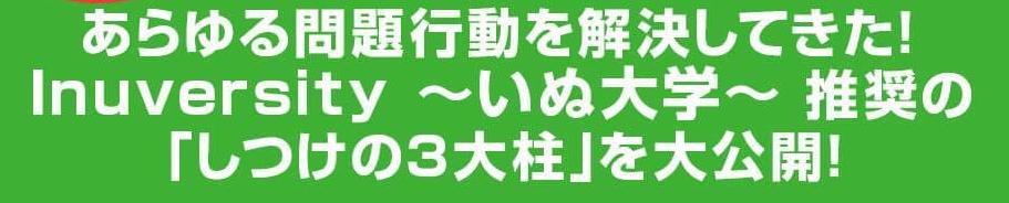 f:id:tealikewoman:20210127165010p:plain