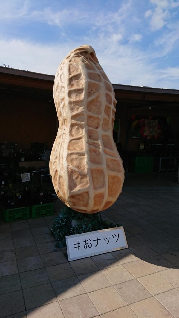 f:id:team-nishifunabashi:20180811001349j:plain