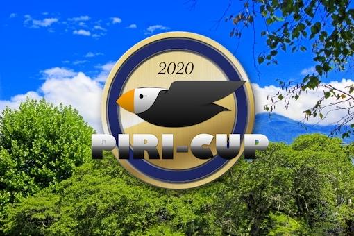 f:id:teampirka:20200501201742j:plain