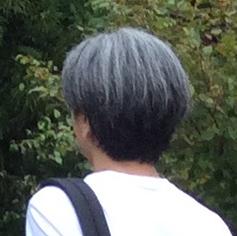 f:id:tebanasu:20190223155425j:plain