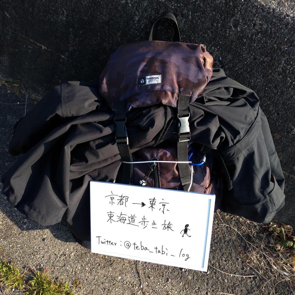 f:id:tebasaki-penguin:20190321185658j:plain
