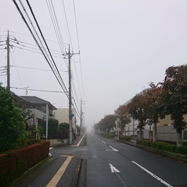 f:id:tebukuro-ouji:20191030074519j:plain