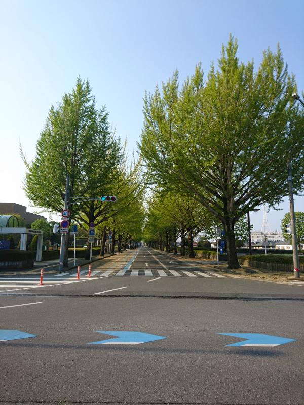 f:id:tebukuro-ouji:20200503111439j:plain