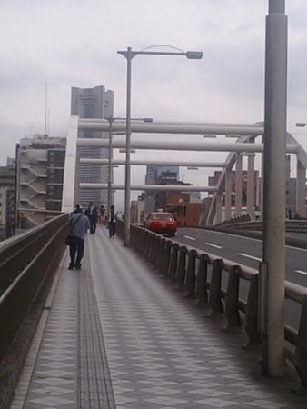 横浜駅そばの陸橋から見るランドマークタワー。この景色が好きです