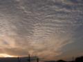 [夕暮れ時]うろこ雲3