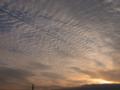 [夕暮れ時]うろこ雲2