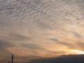 [夕暮れ時]うろこ雲1