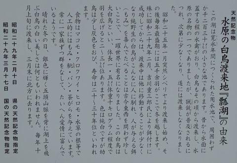 20140127142441(1)瓢湖説明