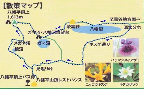 IMG(map)