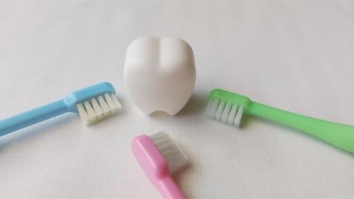 f:id:teethteeth:20210119172949j:image