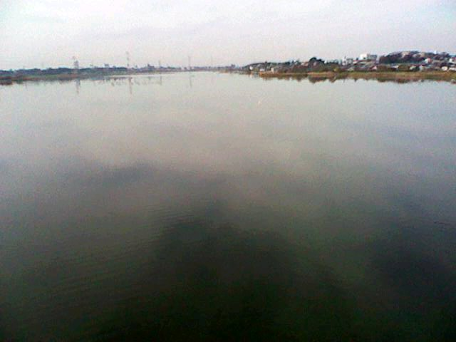 f:id:teganumapark:20111207121431j:image