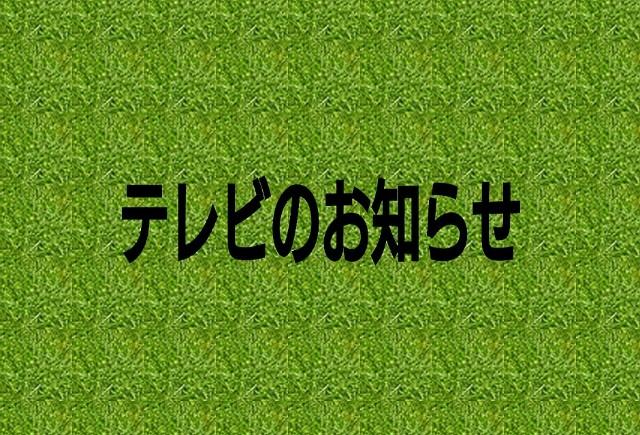 f:id:teihen_geinin:20191130123241j:image