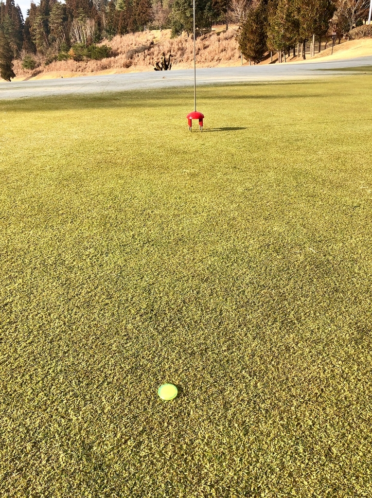 f:id:teinen-golf:20190203205817j:plain
