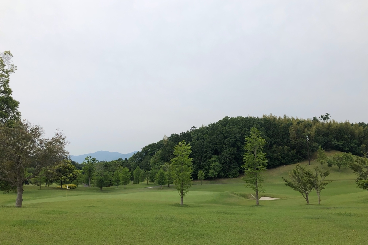 f:id:teinen-golf:20190602194720j:plain