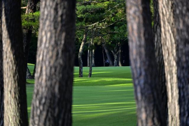 f:id:teinen-golf:20210502134408j:plain