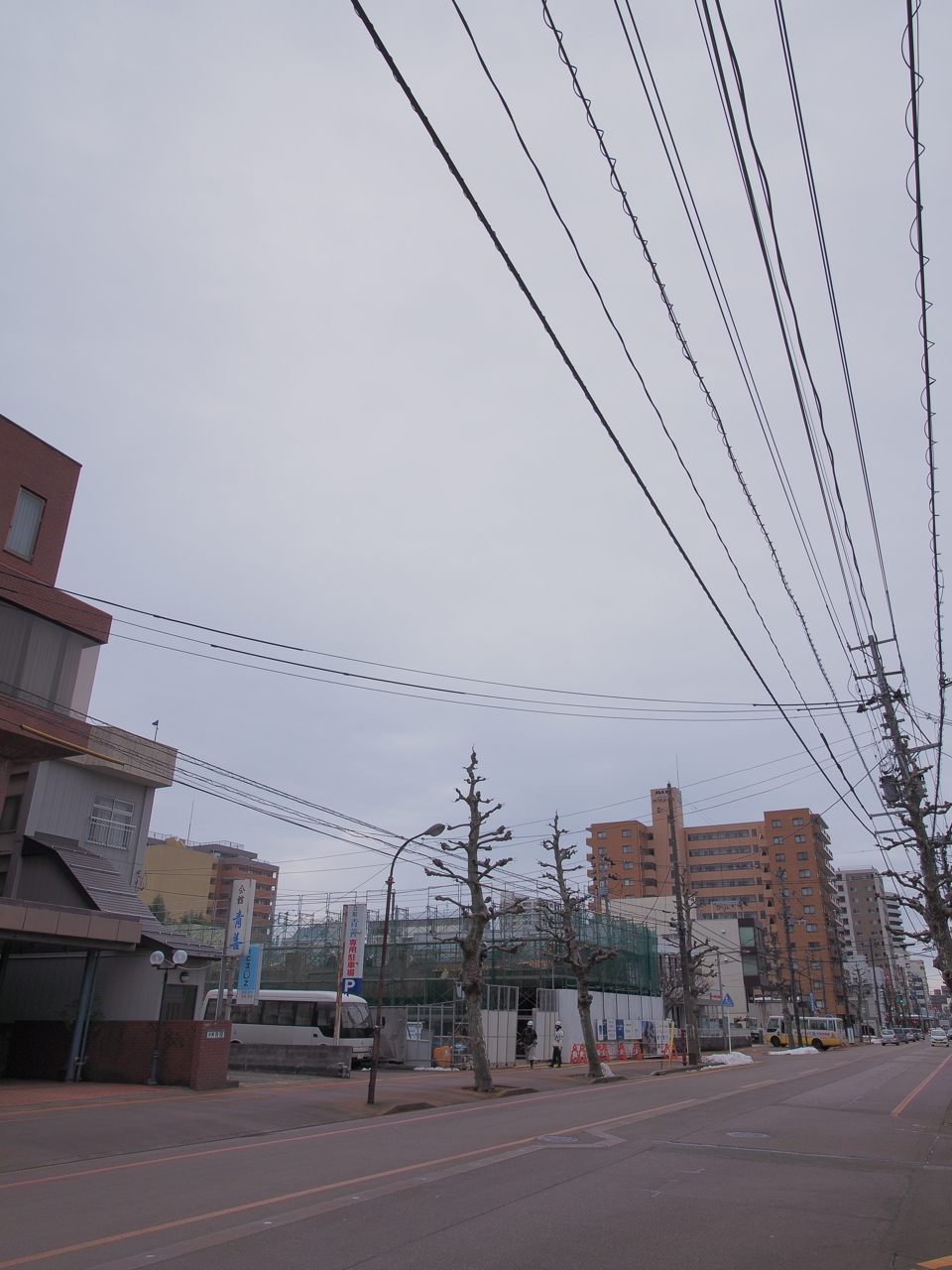 f:id:teitennagaoka:20170219001810j:plain