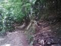 マムシ岩を過ぎたあたりの分かれ道。私達は右へ。