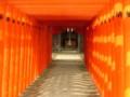 11/11 水前寺成趣園
