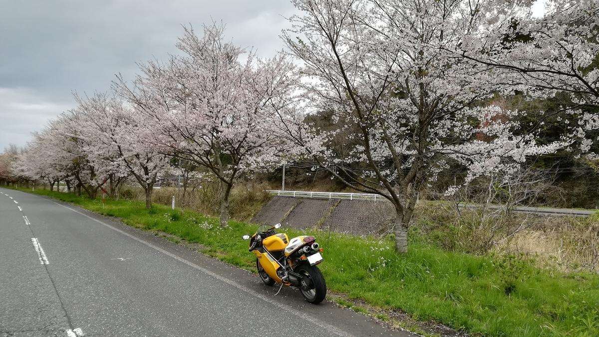 f:id:tekitow-rider:20200412115358j:plain