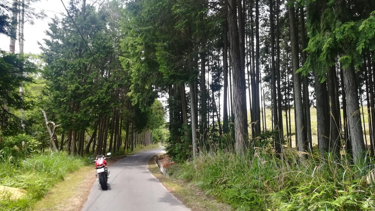 f:id:tekitow-rider:20200610083426j:plain