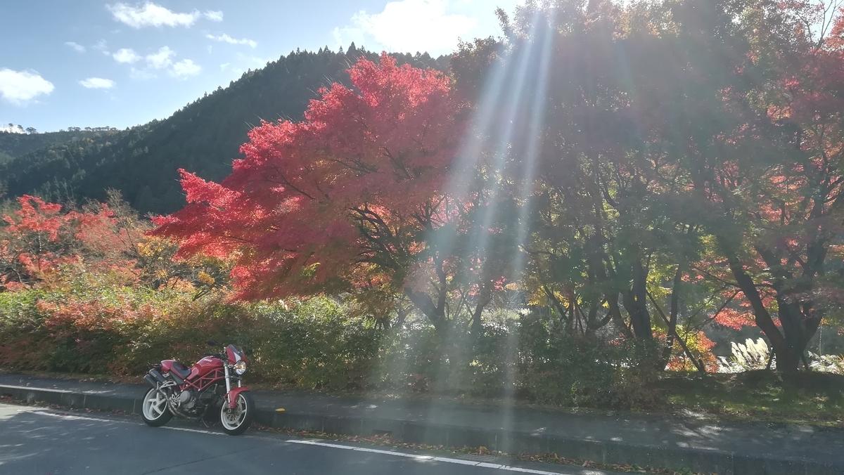 f:id:tekitow-rider:20201121193225j:plain