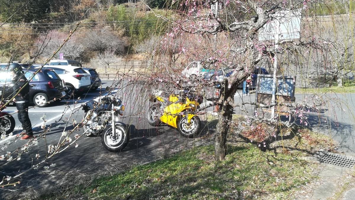 f:id:tekitow-rider:20210223113644j:plain
