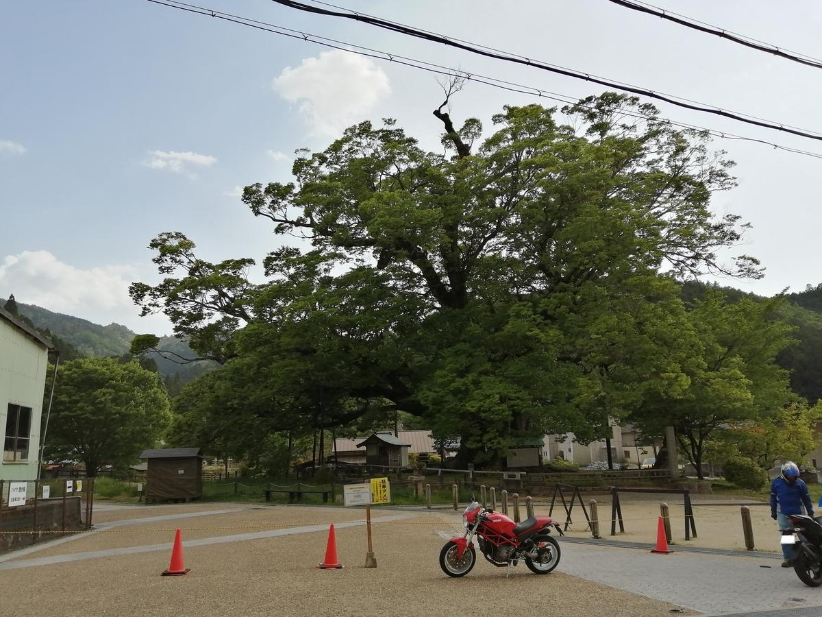 f:id:tekitow-rider:20210511070754j:plain