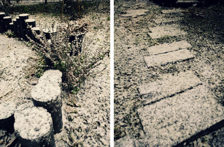 f:id:tellacoli:20121201221938j:image:w350