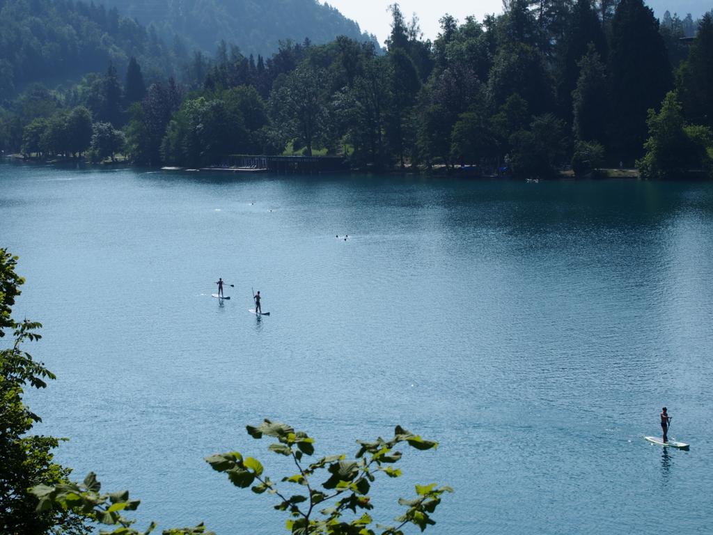 ブレッド湖にてスタンドアップパドル・サーフィンを楽しむ人達