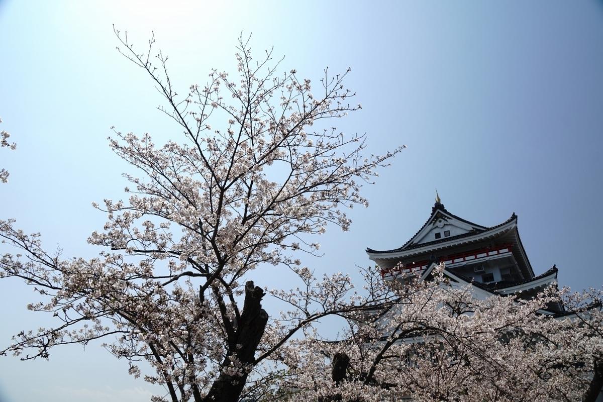 桜と熱海城