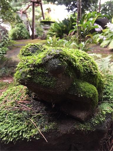 f:id:templecat:20160914123255j:image