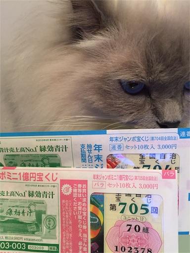 f:id:templecat:20161218152125j:image