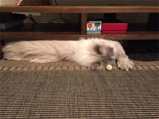 f:id:templecat:20170222160150j:image