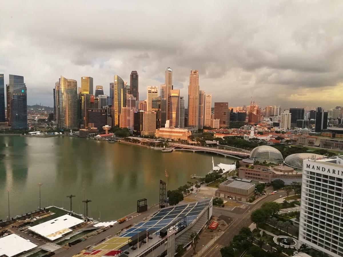ザ・リッツ・カールトン・ミレニア・シンガポールの窓から