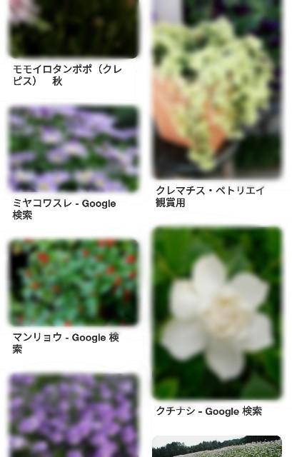 f:id:tenagusa:20180913194544j:image