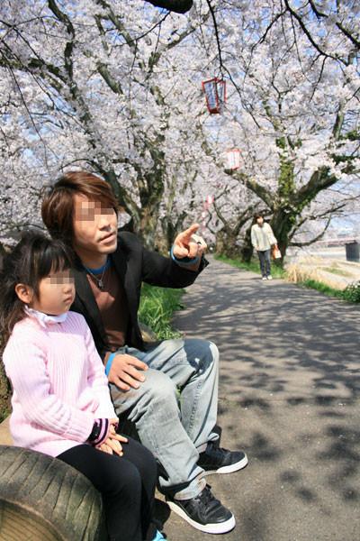 個別「[スナップ]桜並木の父娘」...